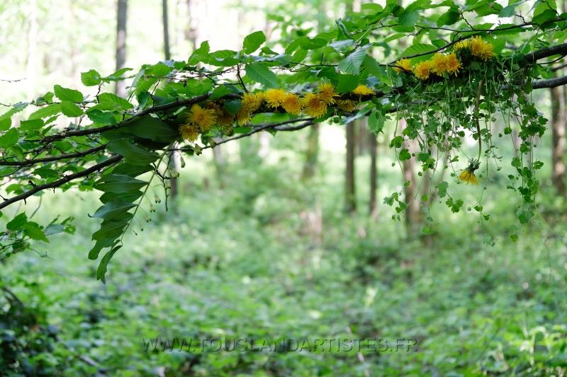 Land_Art_fleurs_Arbres17