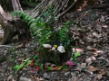 Land_Art_fleurs_Arbres23