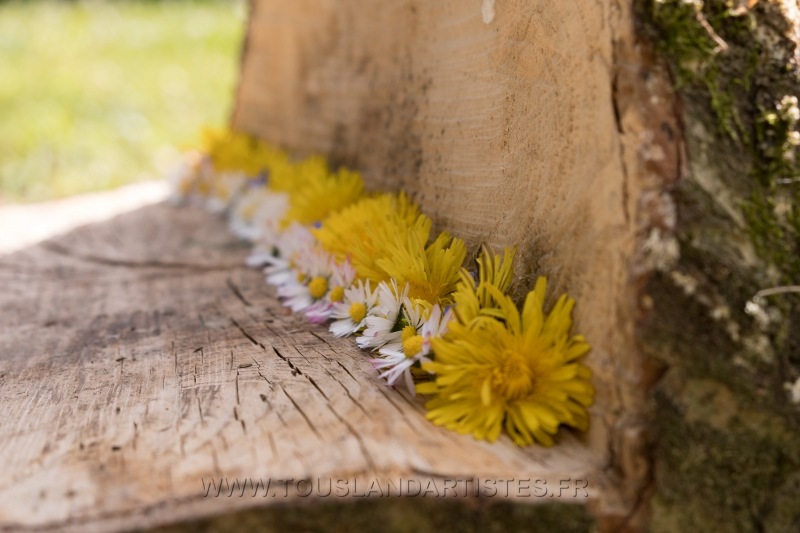 Verrieres_printemps_09