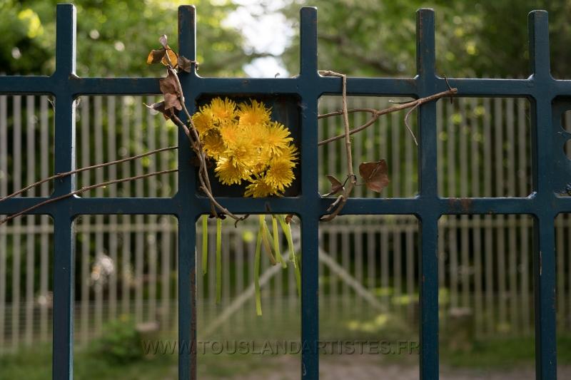 Verrieres_printemps_44