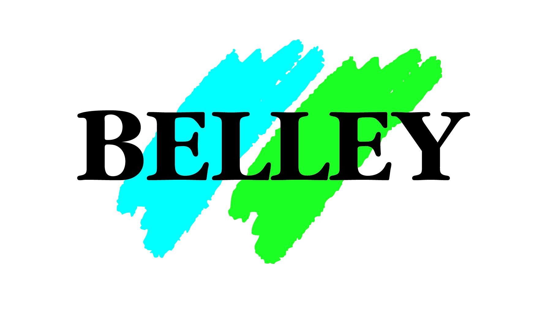 Logo Ville de Belley