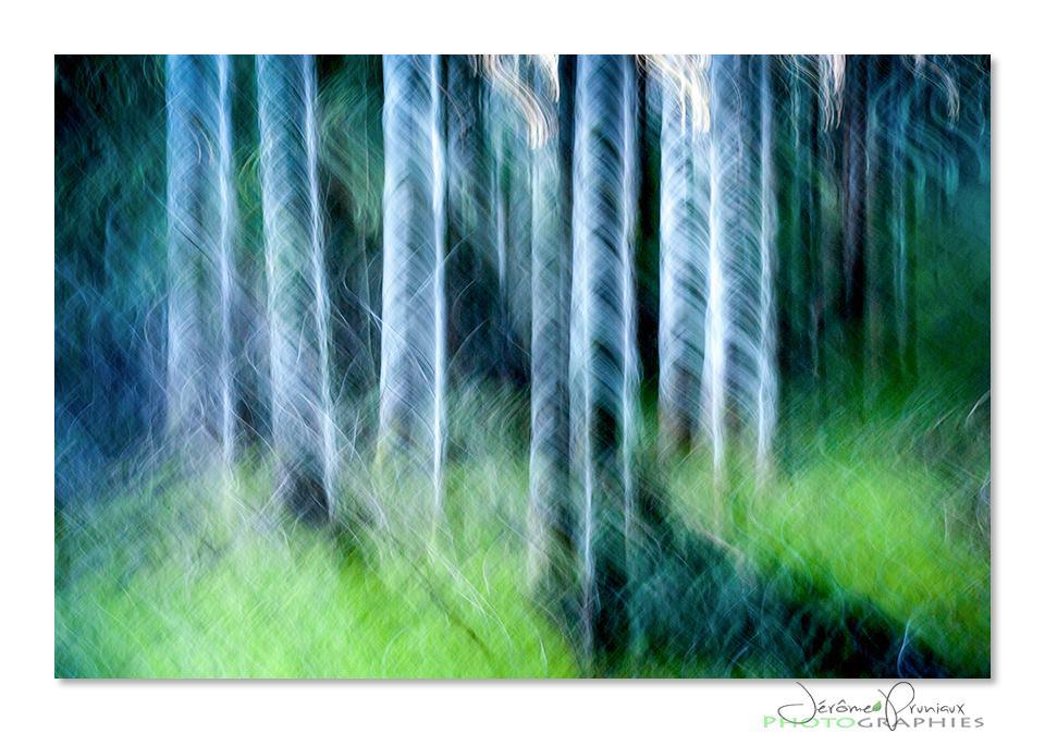 arbrestraction
